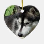 Ornamento del husky siberiano ornamente de reyes