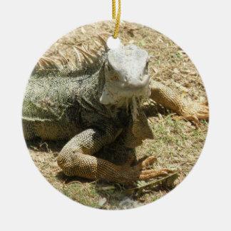 Ornamento del lagarto de la iguana ornamento de navidad