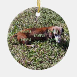 Ornamento del monumento de la foto de los mascotas adorno