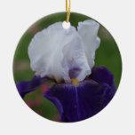 Ornamento del navidad de la flor -- Iris Ornamentos Para Reyes Magos