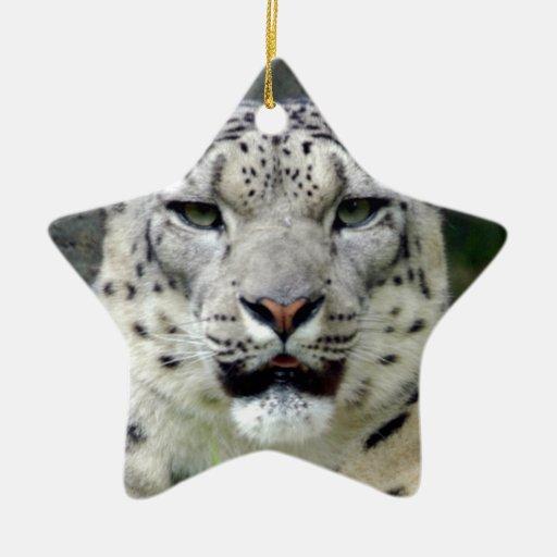 Ornamento del navidad de la onza adorno navideño de cerámica en forma de estrella