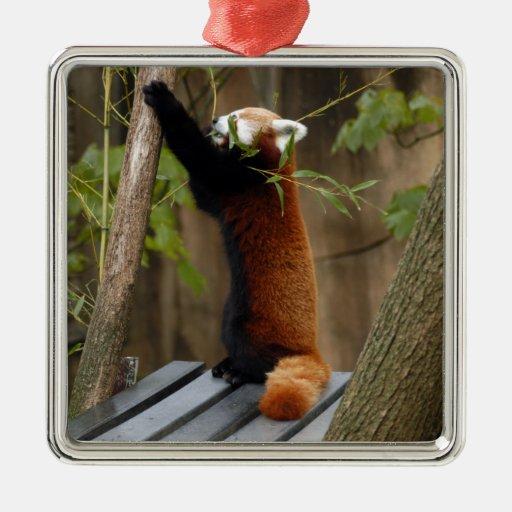 Ornamento del navidad de la panda roja adorno navideño cuadrado de metal