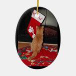 Ornamento del navidad de Marmalady Meowy Ornamento Para Reyes Magos