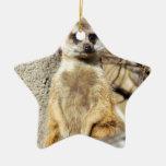 Ornamento del navidad de Meerkat Adornos