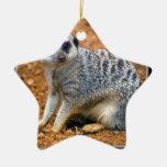 Ornamento del navidad de Meerkat Ornamente De Reyes