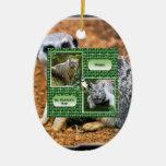 Ornamento del navidad de Meerkat Ornamentos De Reyes Magos