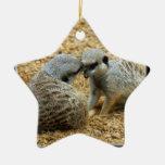Ornamento del navidad de Meerkat Ornamentos De Reyes