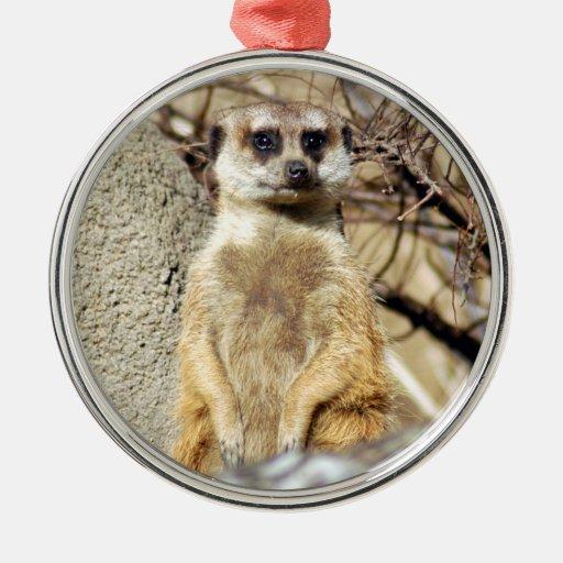 Ornamento del navidad de Meerkat Ornato