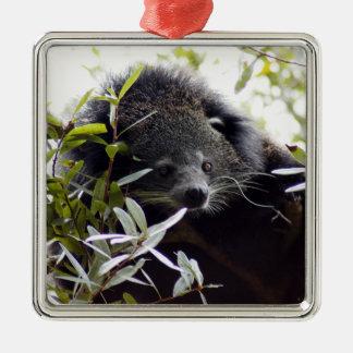 Ornamento del navidad del binturong adorno navideño cuadrado de metal