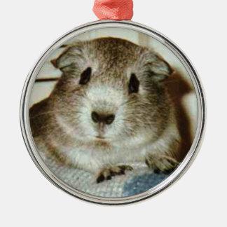 ornamento del navidad del conejillo de Indias Adorno Navideño Redondo De Metal