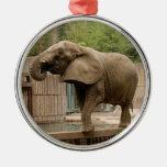 Ornamento del navidad del elefante africano adorno de reyes