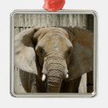 Ornamento del navidad del elefante africano ornamento de navidad