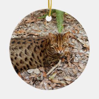 Ornamento del navidad del gato de Bengala Ornamente De Reyes