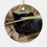 Ornamento del navidad del gato de Geoffroy Ornamento Para Reyes Magos