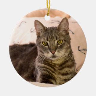Ornamento del navidad del gato de tabby de Greg Adorno Navideño Redondo De Cerámica