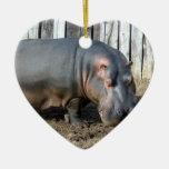 Ornamento del navidad del Hippopotamus Ornamentos Para Reyes Magos