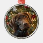Ornamento del navidad del laboratorio del chocolat ornamentos de navidad