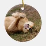 Ornamento del navidad del león de Barbary Ornamente De Reyes
