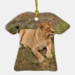 Ornamento del navidad del león de Barbary Ornamentos De Navidad
