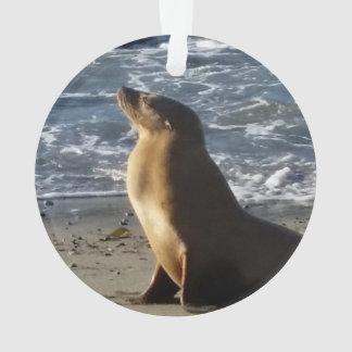 Ornamento del navidad del león marino