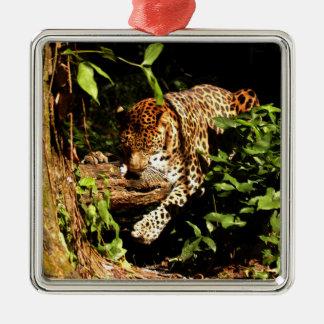 Ornamento del navidad del leopardo ornamento de navidad