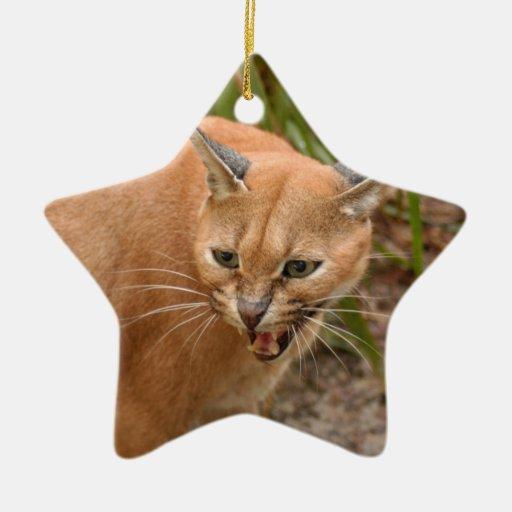 Ornamento del navidad del lince de Caracal Adorno Navideño De Cerámica En Forma De Estrella