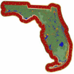 Ornamento del navidad del mapa de la Florida corta Escultura Fotografica