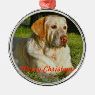 Ornamento del navidad del mascota - haga sus los p ornamentos para reyes magos