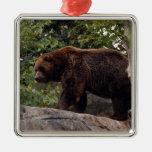 Ornamento del navidad del oso grizzly adorno para reyes