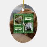 Ornamento del navidad del oso grizzly ornatos