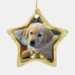Ornamento del navidad del perrito ornamento de reyes magos