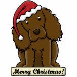 Ornamento del navidad del perro de aguas de Boykin Escultura Fotografica