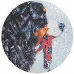 ornamento del navidad del perro de montaña bernese adorno fotoescultura