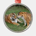 Ornamento del navidad del tigre de Bengala Adorno De Navidad