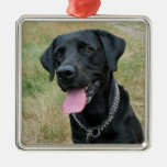 Ornamento del negro del perro del labrador ornamentos de reyes