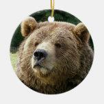 Ornamento del oso