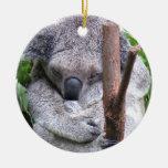 Ornamento del oso de koala adorno de reyes