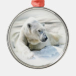 Ornamento del oso polar ornamento de navidad