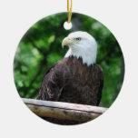 Ornamento del pájaro de Eagle calvo Ornatos
