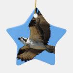 Ornamento del pájaro de Osprey Adorno Navideño De Cerámica En Forma De Estrella