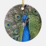 Ornamento del pavo real ornamento de navidad