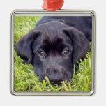 Ornamento del perrito de Labrador - laboratorio ne Ornamentos De Navidad