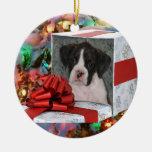 Ornamento del perrito del boxeador del navidad adorno para reyes