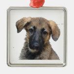 Ornamento del perrito del pastor alemán ornamente de reyes