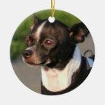 Ornamento del perro de la chihuahua ornamento de navidad