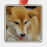 Ornamento del perro de Shiba Inu Adornos