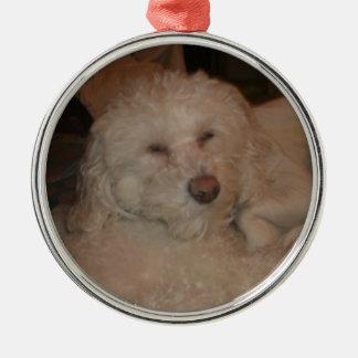 Ornamento del perro ornamentos de navidad