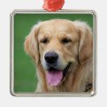 Ornamento del perro del golden retriever, idea del ornamento para reyes magos