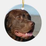 Ornamento del perro del labrador retriever del cho ornamento para reyes magos
