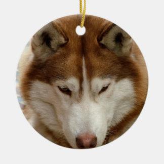Ornamento del perro esquimal de Brown Adorno Redondo De Cerámica